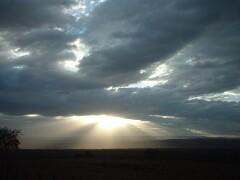 天地創造っぽい光の世界